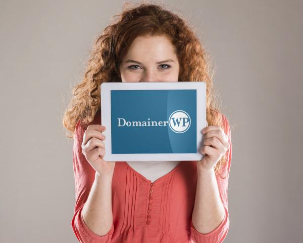 Sample branding #2 for Domainerwp