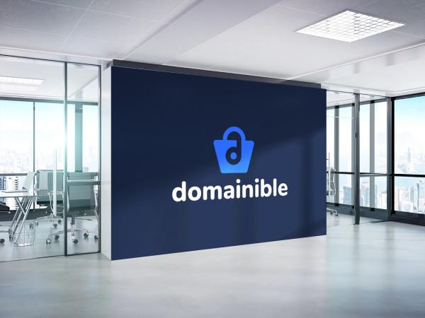 Sample branding #2 for Domainible