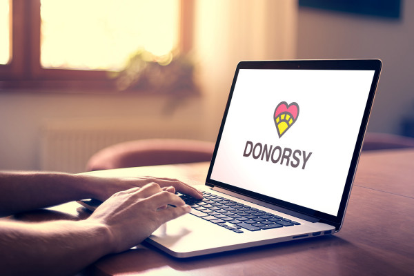 Sample branding #2 for Donorsy
