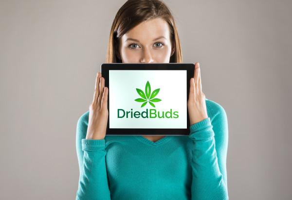 Sample branding #2 for Driedbuds