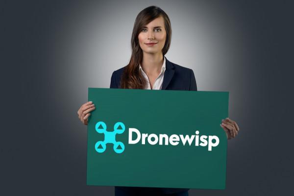 Sample branding #2 for Dronewisp