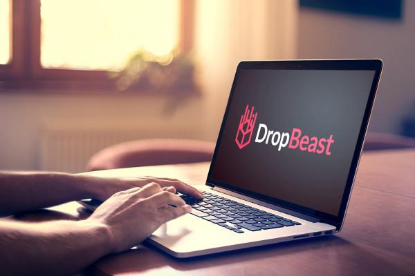 Sample branding #2 for Dropbeast