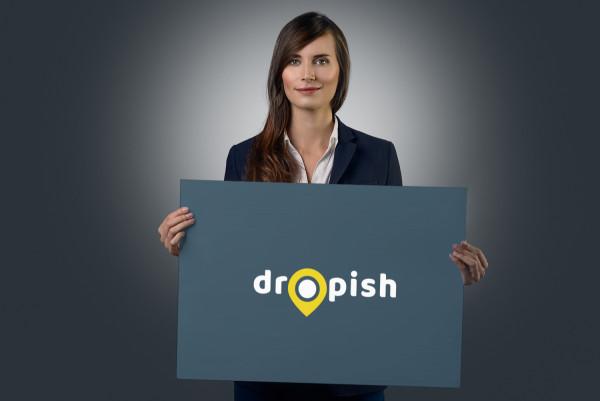 Sample branding #2 for Dropish
