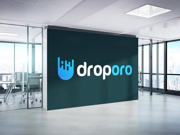 Sample branding #1 for Droporo