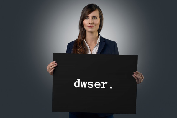Sample branding #1 for Dwser