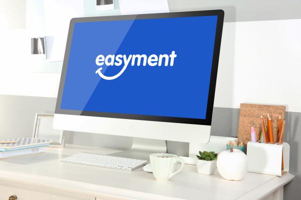 Sample branding #2 for Easyment
