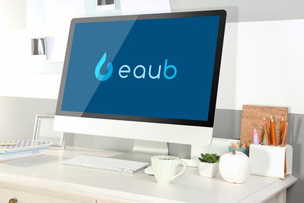 Sample branding #2 for Eaub
