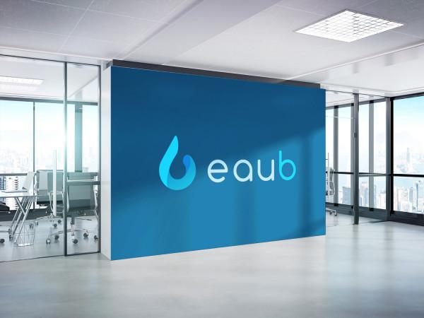 Sample branding #1 for Eaub