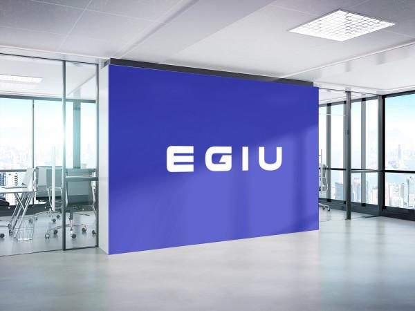 Sample branding #3 for Egiu