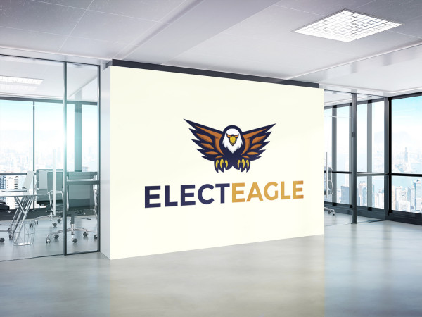 Sample branding #1 for Electeagle