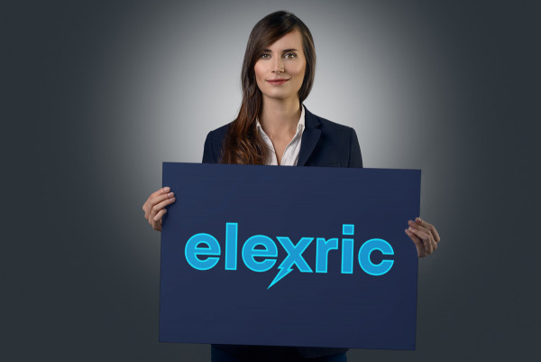 Sample branding #3 for Elexric