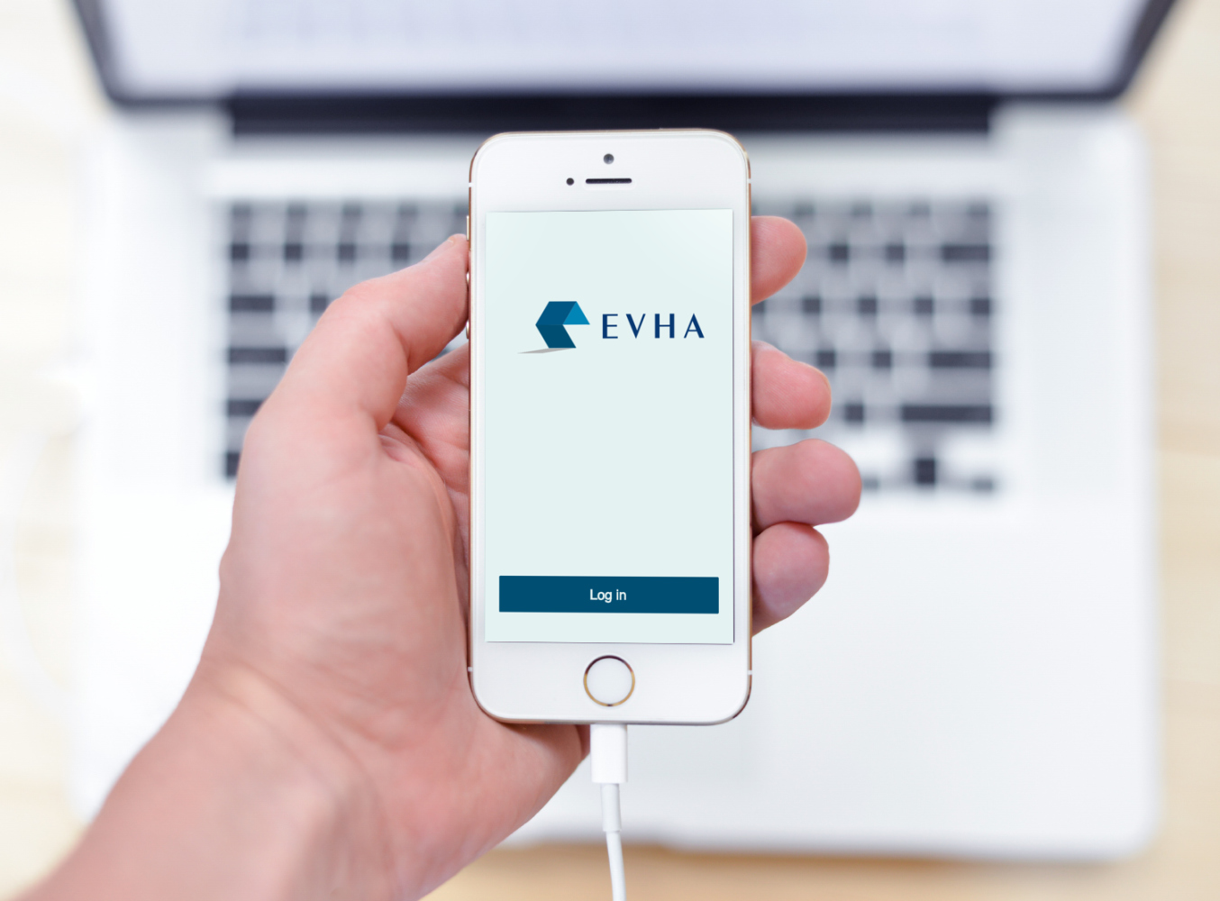 Sample branding #3 for Evha