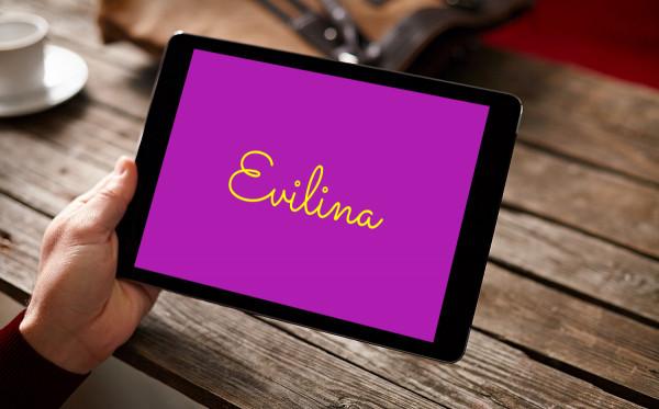 Sample branding #2 for Evilina