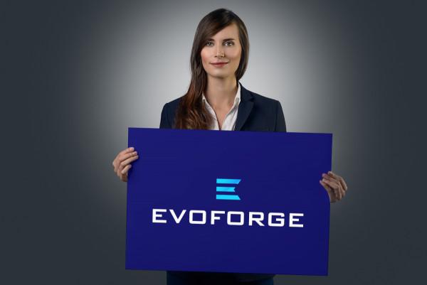 Sample branding #1 for Evoforge