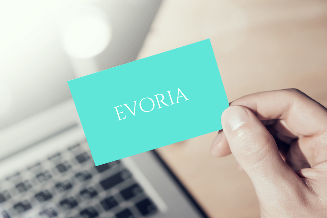 Sample branding #1 for Evoria