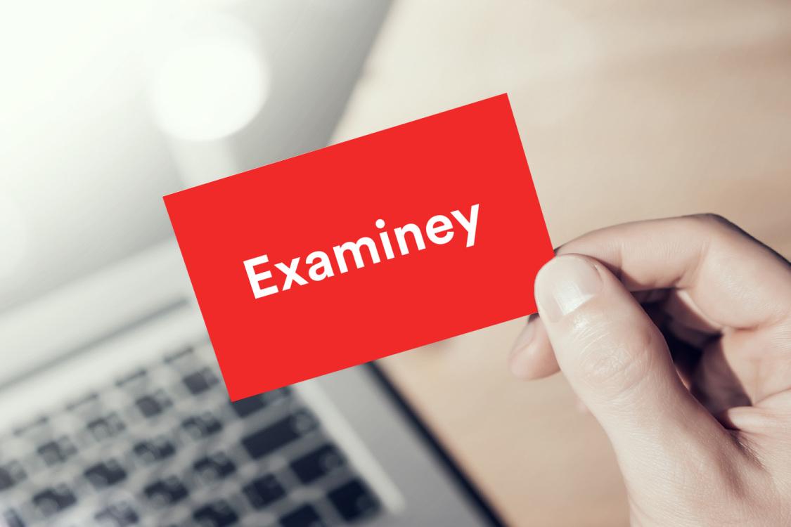 Sample branding #1 for Examiney