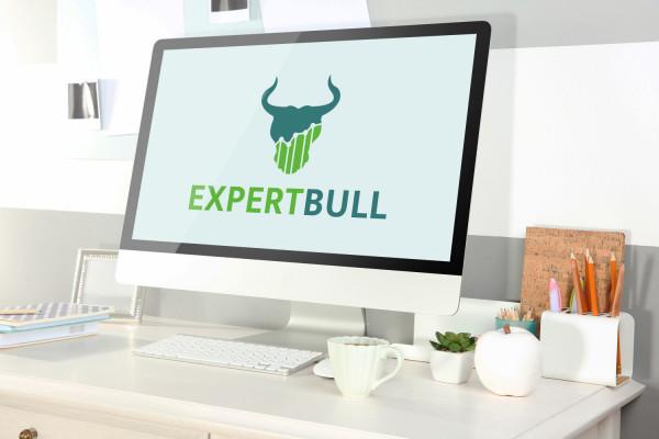 Sample branding #2 for Expertbull