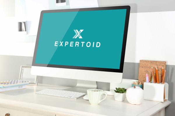 Sample branding #2 for Expertoid