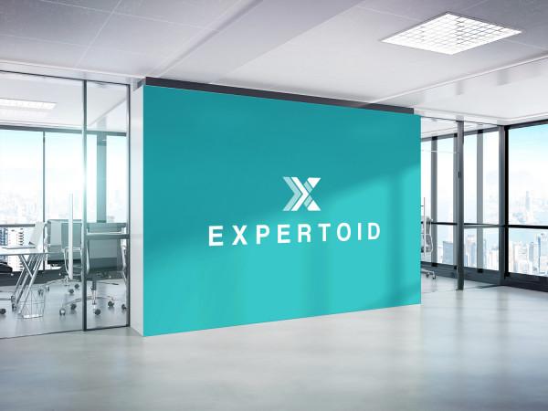 Sample branding #3 for Expertoid