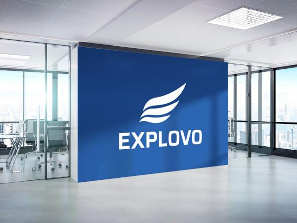Sample branding #2 for Explovo