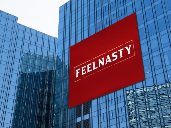 Sample branding #3 for Feelnasty