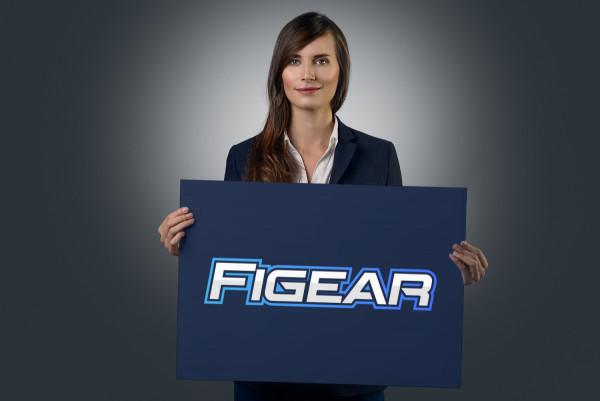 Sample branding #3 for Figear