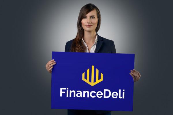 Sample branding #3 for Financedeli