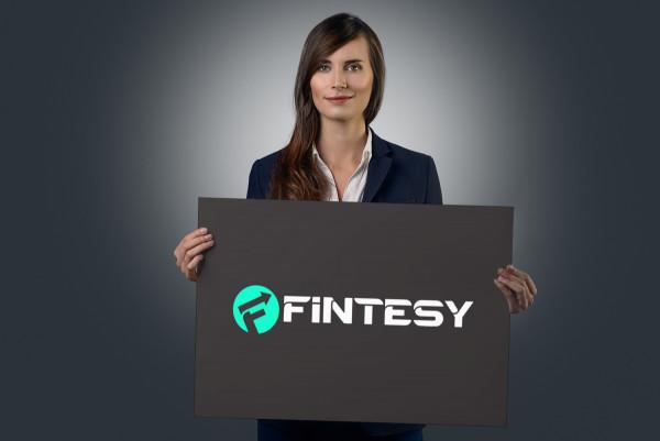 Sample branding #1 for Fintesy