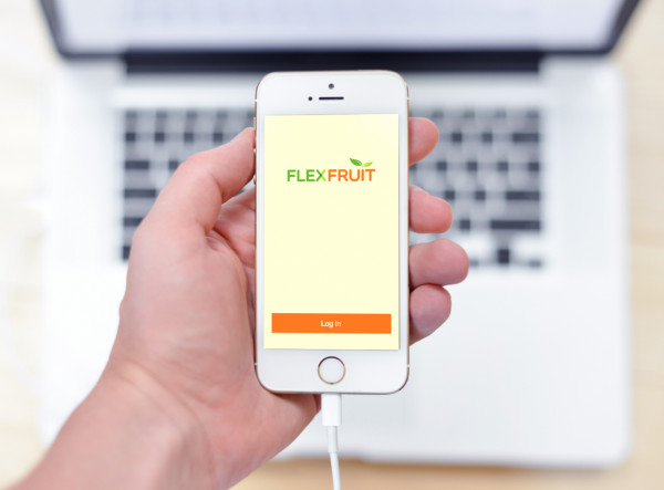 Sample branding #1 for Flexfruit