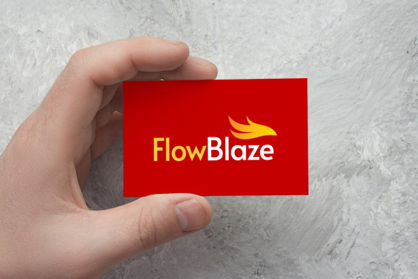 Sample branding #3 for Flowblaze