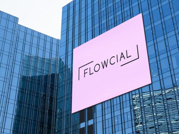Sample branding #3 for Flowcial