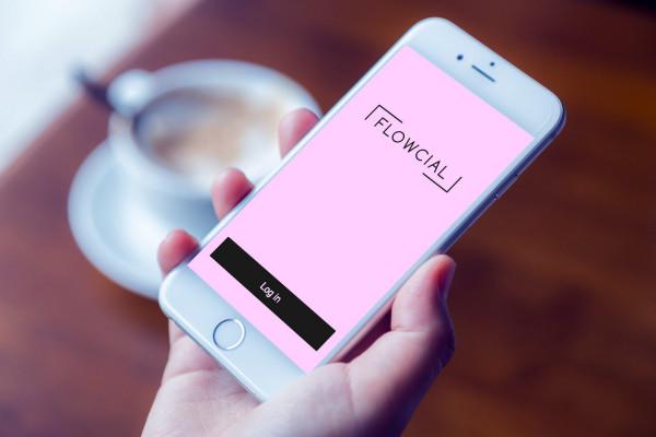 Sample branding #1 for Flowcial