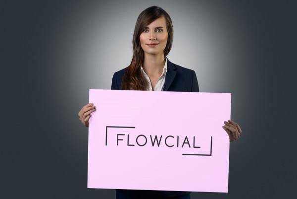 Sample branding #2 for Flowcial