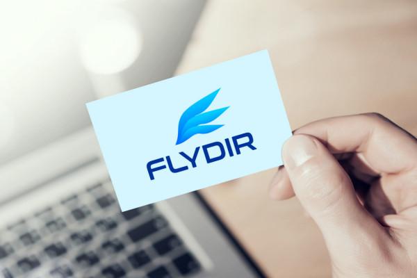 Sample branding #1 for Flydir