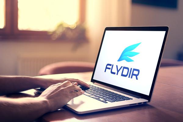 Sample branding #3 for Flydir