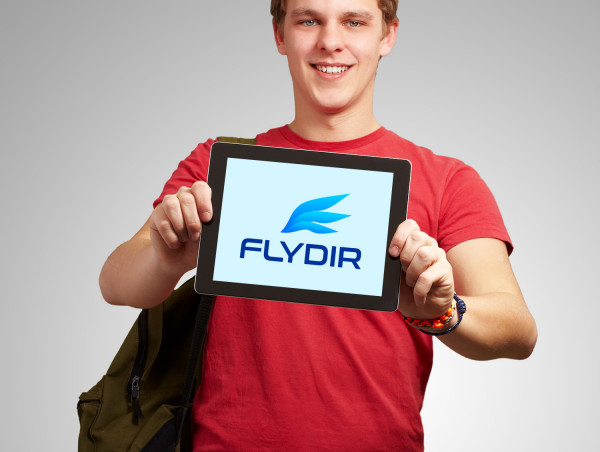 Sample branding #2 for Flydir