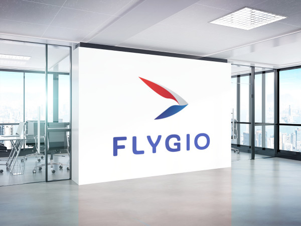 Sample branding #2 for Flygio