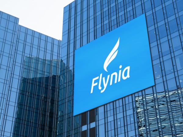 Sample branding #3 for Flynia