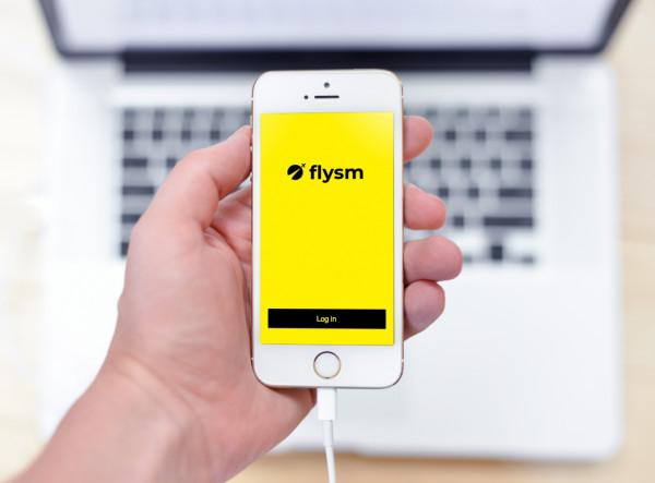 Sample branding #2 for Flysm