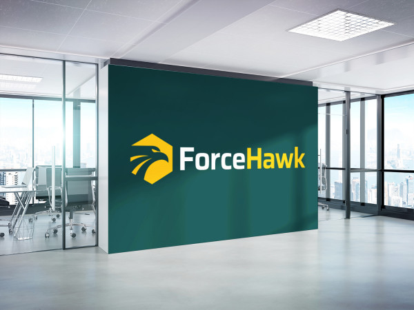 Sample branding #2 for Forcehawk