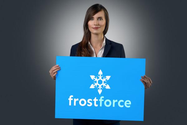 Sample branding #2 for Frostforce