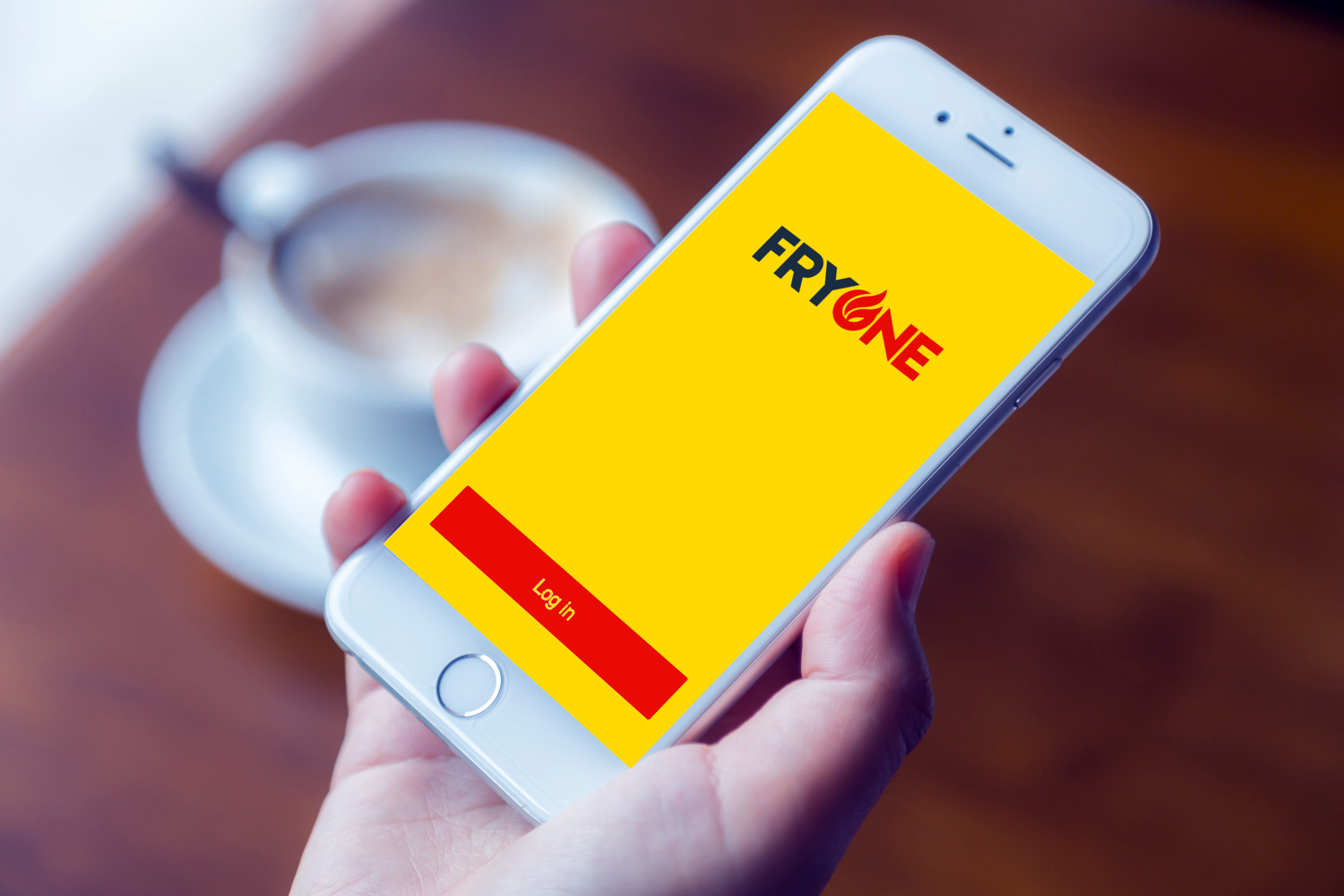 Sample branding #3 for Fryone