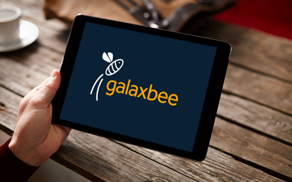 Sample branding #1 for Galaxbee