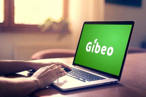 Sample branding #2 for Gibeo