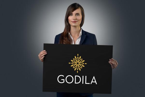 Sample branding #3 for Godila