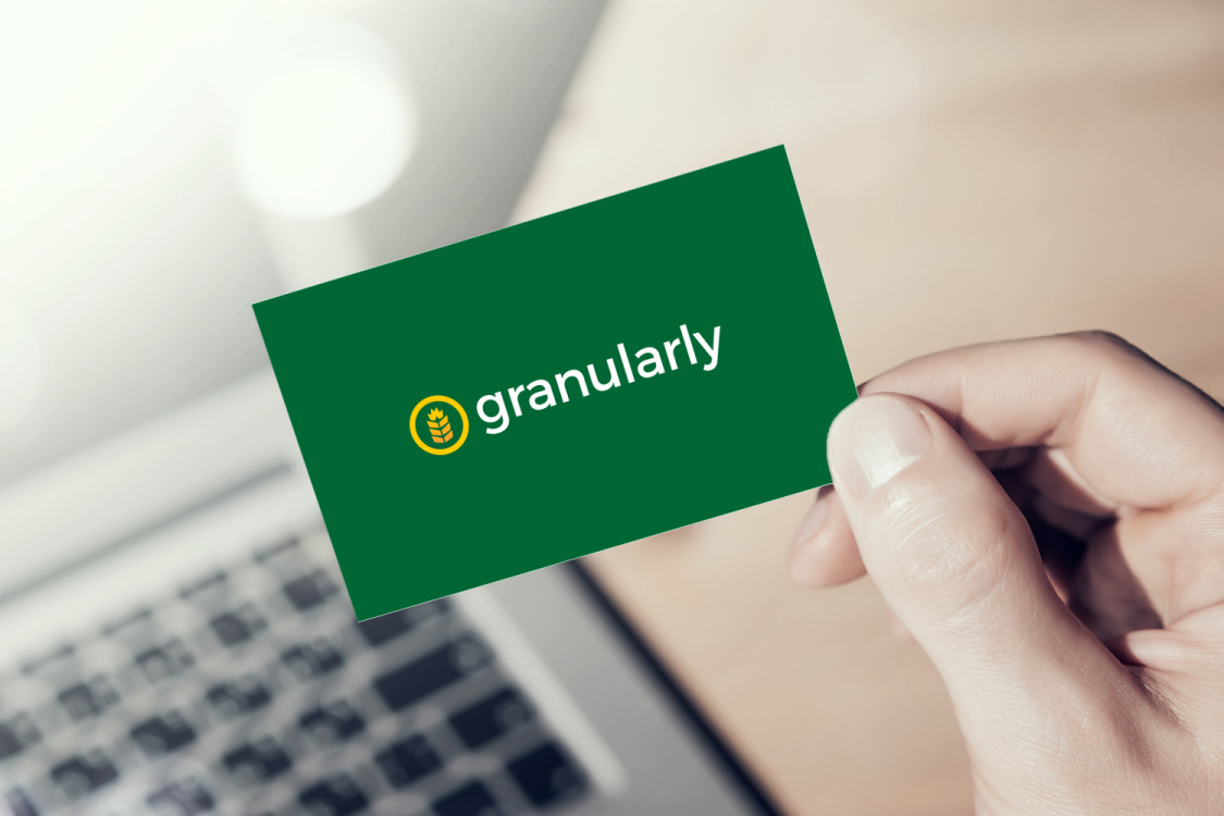 Sample branding #2 for Granularly