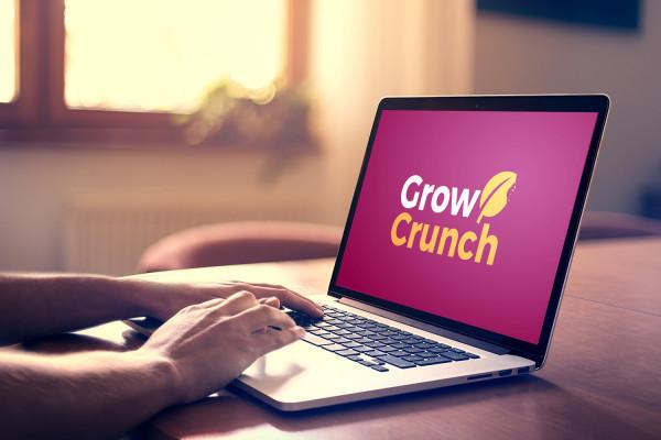 Sample branding #2 for Growcrunch