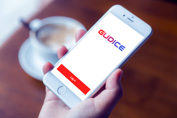 Sample branding #2 for Gudice