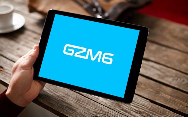 Sample branding #1 for Gzm6