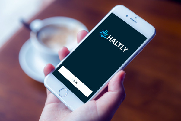 Sample branding #1 for Haltly
